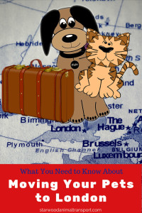 moving your pet to london http://www.starwoodanimaltransport.com/moving-your-pet-to-london-what-to-know