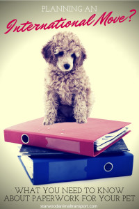 paperwork needed for dog relocation to another city or country  http://starwoodanimaltransport.hs-sites.com/blog/what-paperwork-do-i-need-for-my-pets-relocation-to-another-city-or-country/ @starwoodpetmove