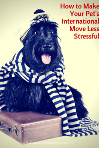 How can I reduce the stress of an international move on my pet http://starwoodanimaltransport.hs-sites.com/blog/reduce-the-stress-of-an-international-move-on-my-pet/ @starwoodpetmove