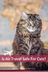Is air travel safe for cats http://starwoodanimaltransport.hs-sites.com/blog/is-air-travel-safe-for-cats/ @starwoodpetmove