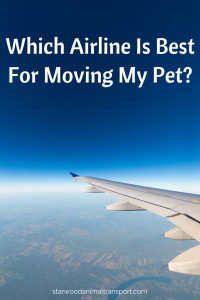 Which airline is best for my pet  http://starwoodanimaltransport.hs-sites.com/blog/best-airline-to-move-a-pet/ @starwoodpetmove