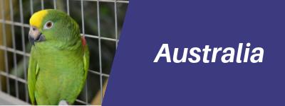 Australia Pet Transport