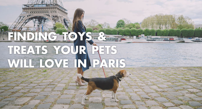 a lady and her dog walking along Paris to find pet toys and treats.