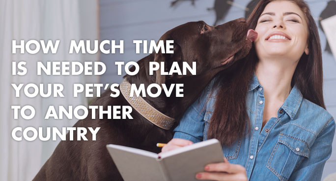 How Much Time is Needed to Plan Your Pet's Move to Another Country https://www.starwoodanimaltransport.com/time-needed-to-plan-pet-move-another-country
