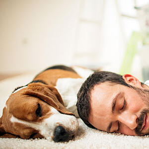 Man and dog sleeping together-Insiders-Guide-To-Relocating-Your-Pet-Blog3