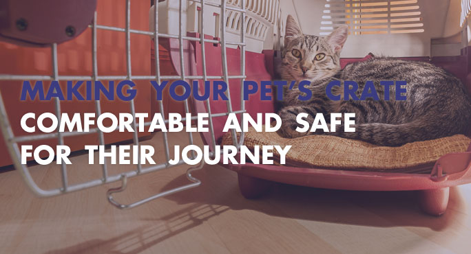 How To Make Your Pet's Crate Comfortable.
