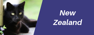 New Zealand Pet Transport