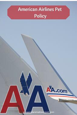American Airlines Pet Policy
