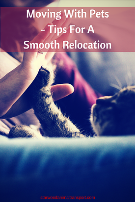 Moving With Pets - Tips For A Smooth Relocation http://www.starwoodanimaltransport.com/blog/moving-with-pets-tips-for-a-smooth-relocation @starwoodpetmove