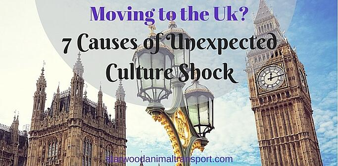Moving to the UK? 7 Causes of Unexpected Culture Shock http://www.starwoodanimaltransport.com/blog/moving-to-the-uk-7-causes-of-unexpected-culture-shock @starwoodpetmove