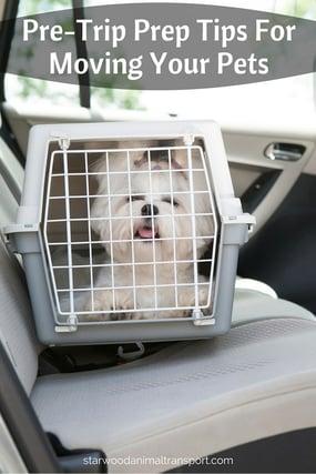 Pre-Trip Prep Tips For Moving Your Pets http://www.starwoodanimaltransport.com/blog/pre-trip-prep-tips-for-moving-your-pets @starwoodpetmove