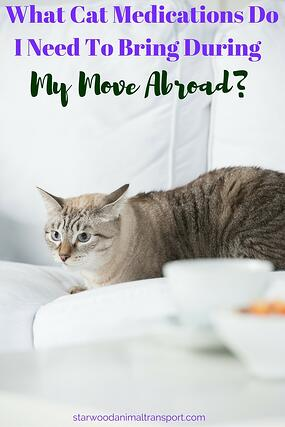 What Cat Medications Do I Need To Bring During My Move Abroad? http://www.starwoodanimaltransport.com/blog/what-cat-medications-do-i-need-to-bring-during-my-move-abroad @starwoodpetmove