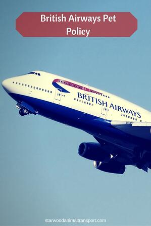 British Airways aircraft and it's pet policy