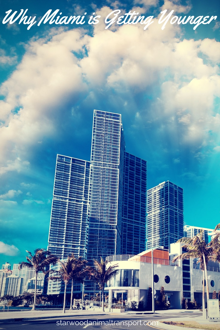 Why Miami is Getting Younger  http://www.starwoodanimaltransport.com/blog/why-miami-is-getting-younger @starwoodpetmove