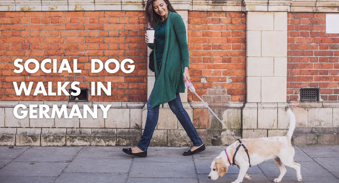 young woman on a social walk with her dog in germany