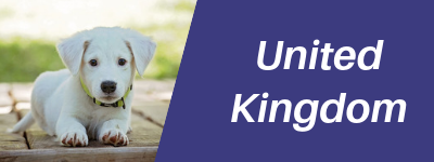 United Kingdom Pet Transportation