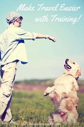 Getting Ready to travel with your pet? Make it easier with training! http://www.starwoodanimaltransport.com/blog/why-a-well-trained-pet-finds-it-easier-to-travel