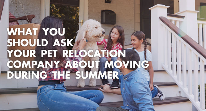 What You Should Ask Your Pet Relocation Company About Moving