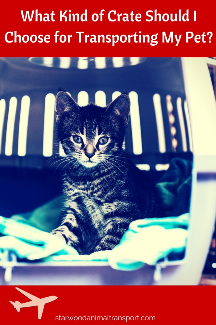 Choosing the best crate for your pet's travel http://www.starwoodanimaltransport.com/blog/what-types-of-crates-are-best-to-ship-my-dog-or-cat-in
