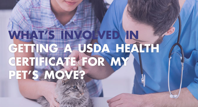 Getting a USDA  Health Certificate for My Pets Move