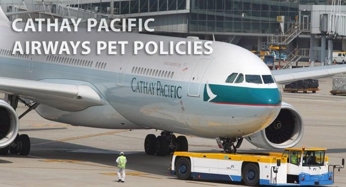 cathay airways plane on runway