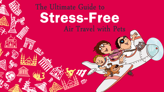 stress-free-flying-dogs-cats-blog-1.png