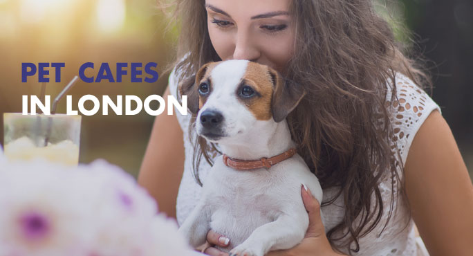 Pet Cafes in London