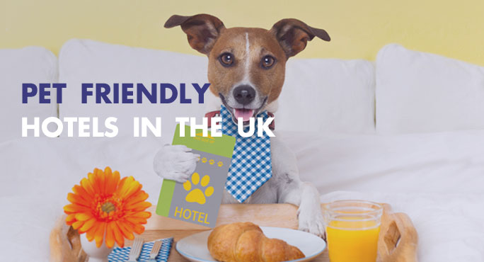 Pet Friendly Hotels in The UK