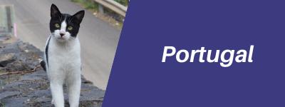 Portugal-pet-relocation-button