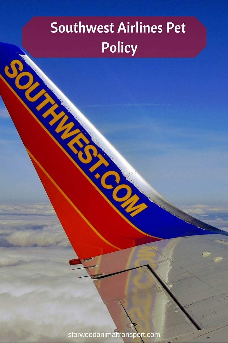 southwest airlines baggage policy for domestic flights