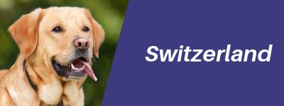 Switzerland-pet-relocation-button