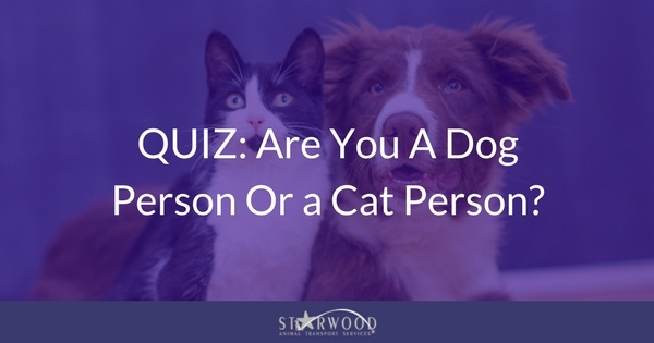 dog or cat person quiz share image.jpg